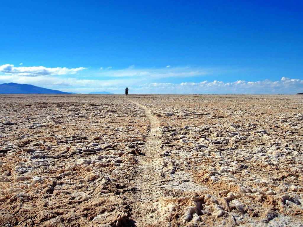 Blazing Trail