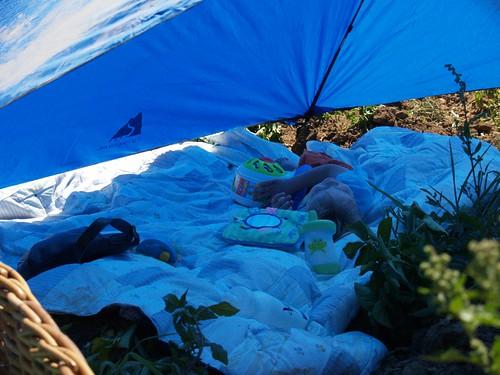 Atti in the shade