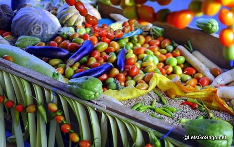 Quezon Harvest / Produce