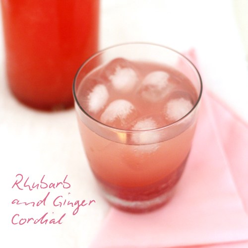 rhubarb ginger cordial