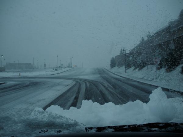 20100423- Spring Snow