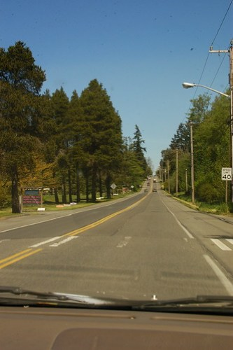 the main highway