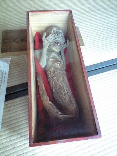 人魚のミイラ