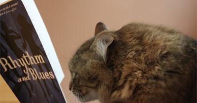 4693455434 e6b6309c61 A Bit Of Me(Me): Animals?