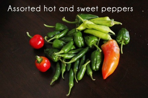 assorted hot and sweet peppers