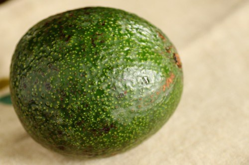 reed avocado