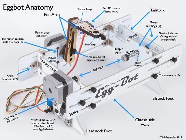 Eggbot Anatomy