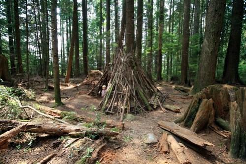 Forêt - North Vancouver