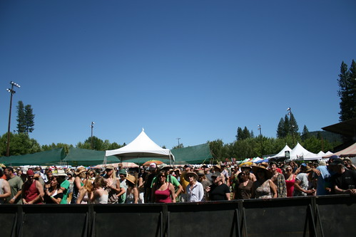 High Sierra 2010: Newfangled Wasteland crowd