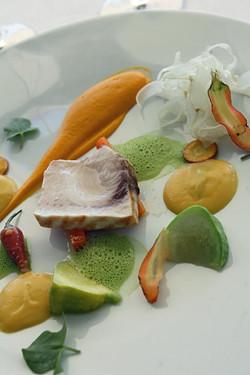 swordfish, carrot, squash