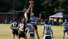 Balmain Tigers v Camden Cats AFL Division1 May 27 2017 00063