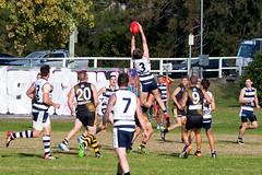 Balmain Tigers v Camden Cats AFL Division1 May 27 2017 000151