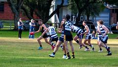 Balmain Tigers v Camden Cats AFL Division1 May 27 2017 00017