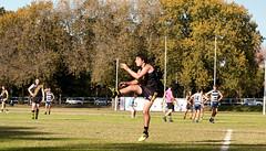 Balmain Tigers v Camden Cats AFL Division1 May 27 2017 00025