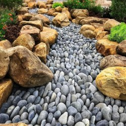 Small Of Whiz Q Stone