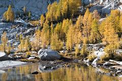 Pond between Sprite and Leprechaun