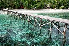 Jetty and house reef