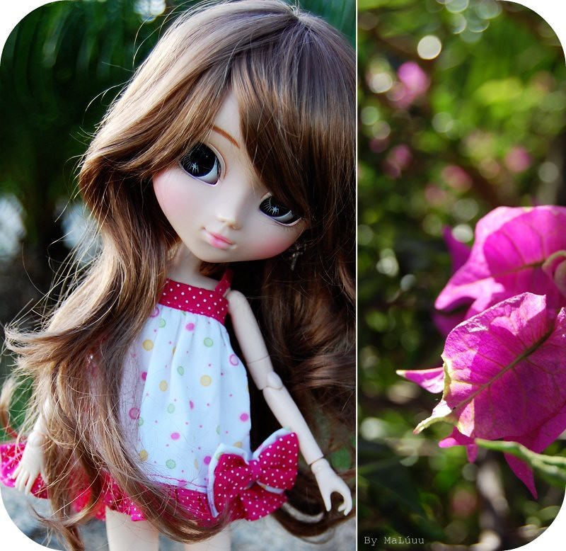 20 sweet dolls paula sets