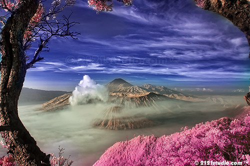 Mount Bromo, Batok & Semeru (Infrared)