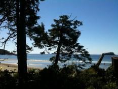 Reader B.R. Mackenzie Beach Tofino, BC 900am