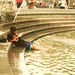 Reading with feet in the Washington Square fountain...
