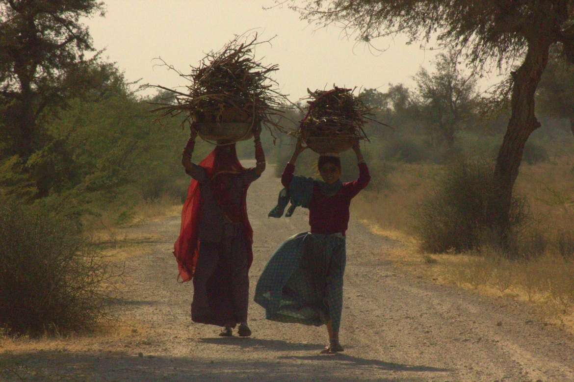 Women carrying firewood in Rajasthan