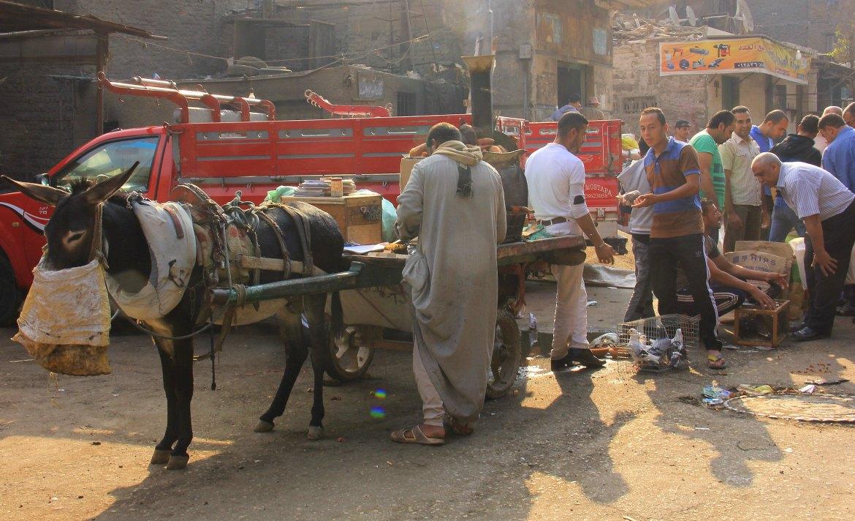Donkey carts can be seen at soul al Goma