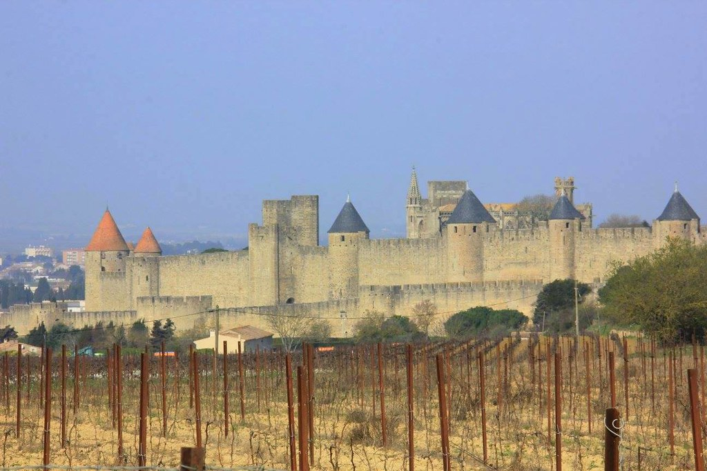 Carcassonne is surrounded by vineyards