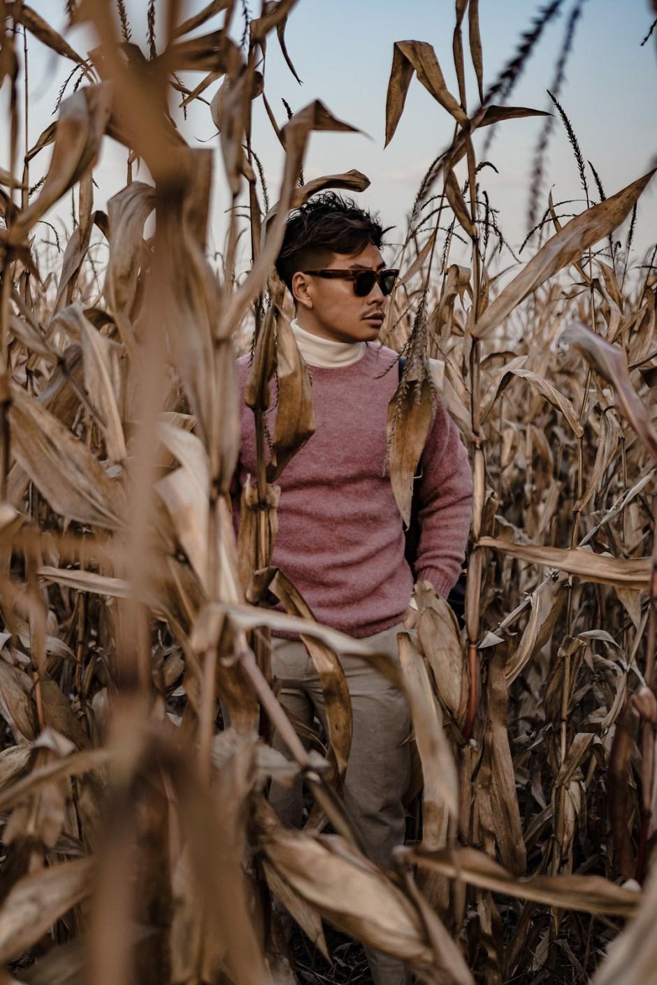 corn_field-5