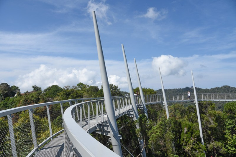 canopy walk at the habitat in penang hill