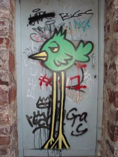 Laconic bird