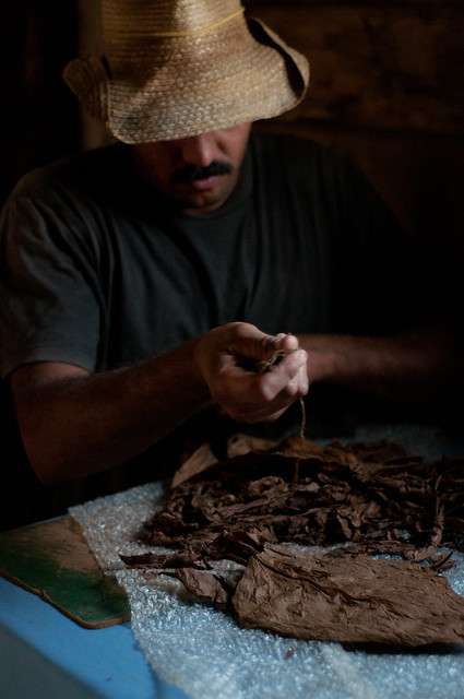 Making Cuban cigars in Cuba
