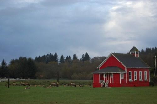 Elk Meadow, Orick CA