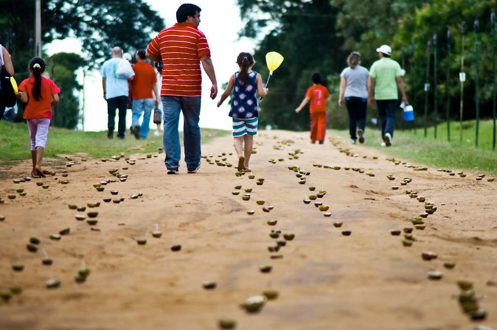 Como se ven todos los años, mas de 100 mil candiles hechos de naranja agria (apepú) y cebo, fueron colocados a lo largo de los 3 kilometros que comprenden la calle principal del pueblo en donde se lleva a cabo la tradicional marcha totalmente iluminada por estas velas. (Elton Núñez - San Ignacio, Paraguay)