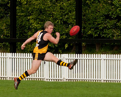 Balmain-Tigers-v-UNSWES-Round-9-2014-0049