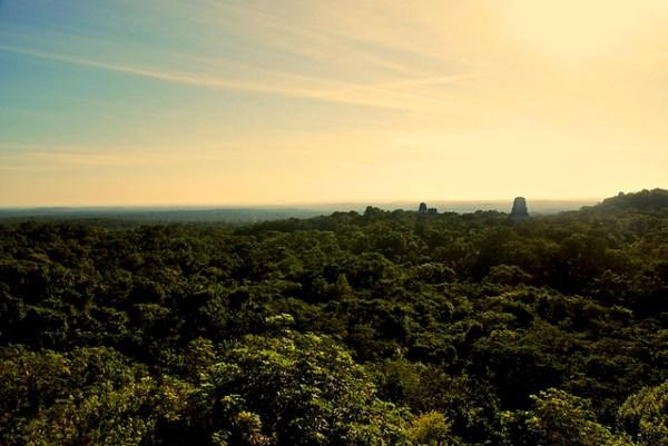 el Tikal Guatemala Ruinas de Tikal Guatemala