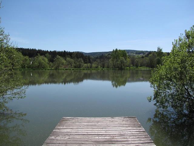 Kaltes Wasser - Erlauzwieseler See