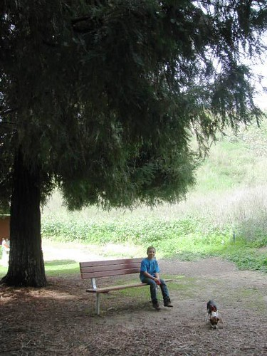 Hiking Carbon Canyon Loop