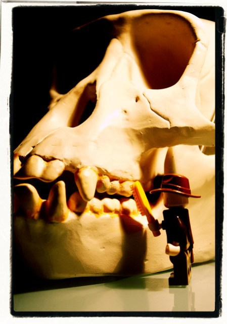 Indiana Jones and the Giant Monkey Skull With Bad Dental Hygiene