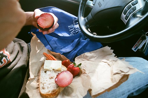 tim's chattanooga picnic