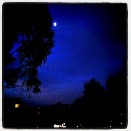 the moon tonight