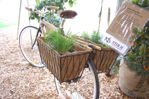 Stalk Bicycles Bamboo Bike