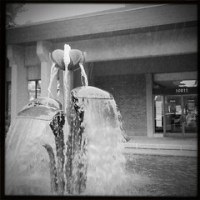 Lily Fountain in Lakewood