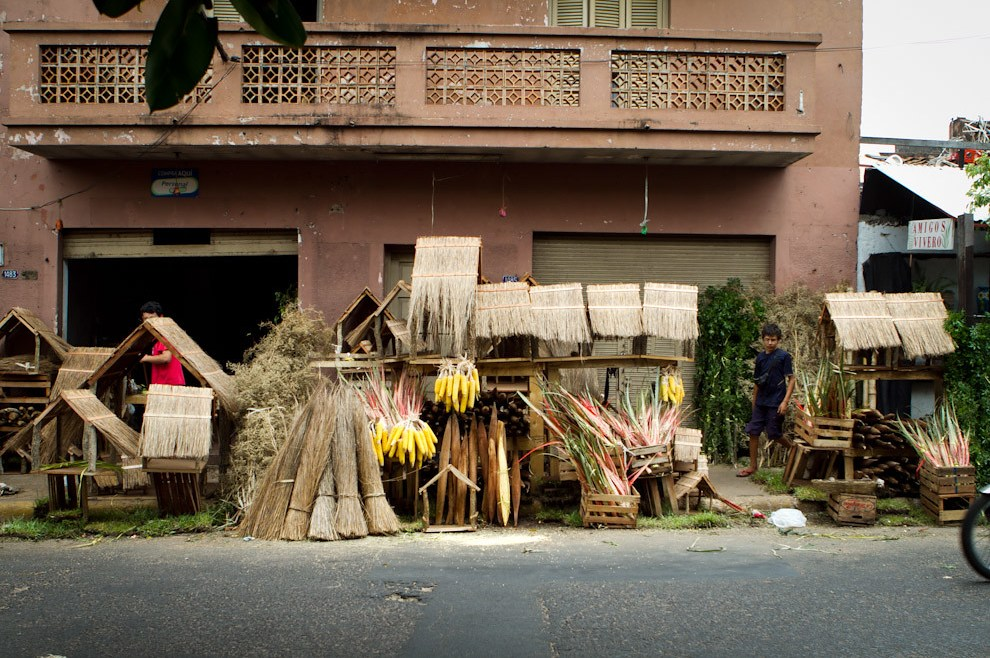 Casitas de paja, Flor de Coco, Ka´avove´i y otros productos son ofrecidos en las inmediaciones del Mercado 4 para la preparación del tradicional pesebre, costumbre local que vemos cada vez con menos frecuencia. (Tetsu Espósito - Asunción, Paraguay)