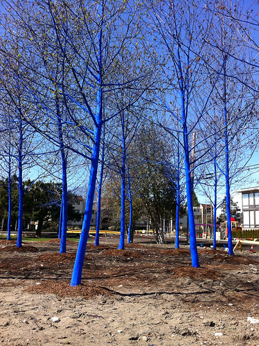 The Blue Trees-2