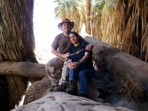 Anza Borrego 2009--Within the Palm Oasis!