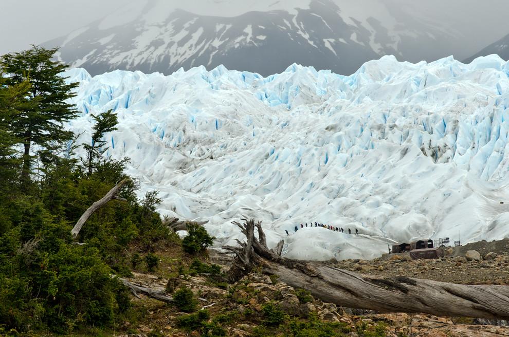 Los turistas avanzan desde la base de salida de las expediciones de trekking sobre el glaciar en el Parque Nacional de los Glaciares.(Roberto Dam - Patagonia, Argentina)