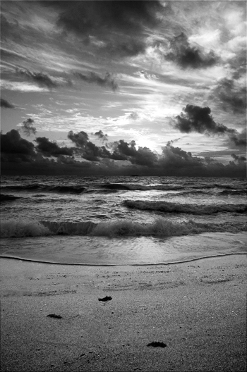 Sunrise at Beach - Black and White