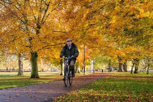 Autumn at Jesus Green