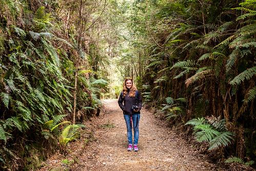 Bushwalking in the rainforest